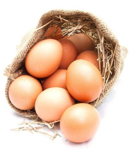 Private Hühnerhaltung einfach gemacht mit 5 Hühnern für das eigene Frühstücksei